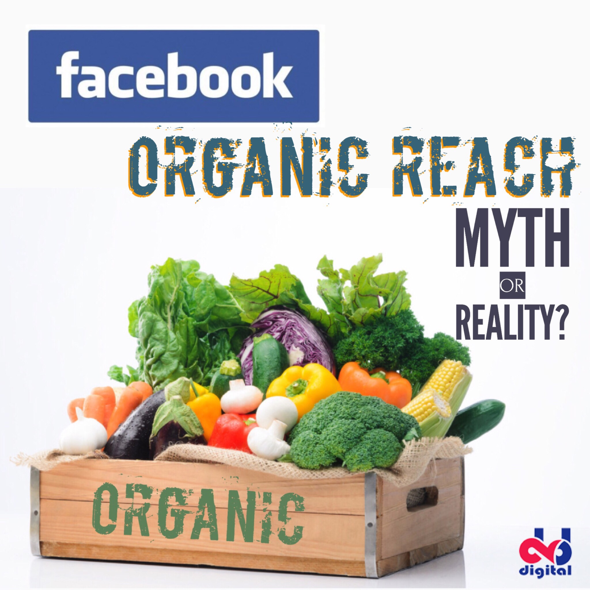 Facebook organic search: myth or reality?
